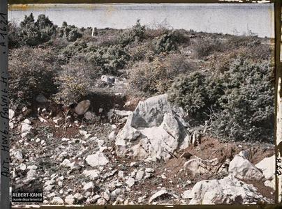 Bosnie, Buna, La steppe calcaire à genévriers avec un autre buisson épineux et feuillu.La steppe calcaire à genévriers avec un autre buisson épineux et feuillu