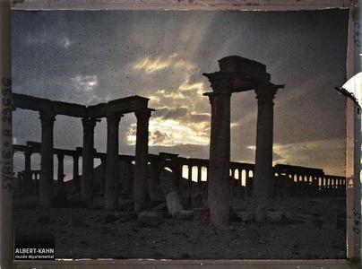 Syrie, Palmyre, Colonnade de la rue Centrale au soir tombant..La grande colonnade au crépuscule