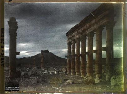 Syrie, Palmyre, Vue sur les rues à double Colonnade. Vestiges de colonnes au soleil couchant