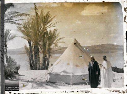 Arabie, Akaba, Palmeraie campement chérifien. Campement des forces arabes du royaume du Hedjaz, dans une palmeraie au bord du golfe d'Aqaba