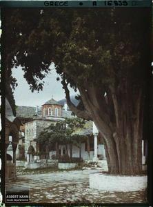 Mont Athos, Grande Lavra, Une partie de la Cour et un gros Cyprès.