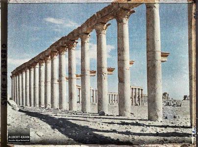 Syrie, Palmyre, Colonnade de la rue perpendiculaire à la rue Centrale. La colonnade transversale, perpendiculaire à la grande colonnade centrale