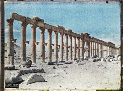 Syrie, Palmyre, Perspective sur les Colonnades de la rue Centrale. La grande colonnade