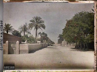 Egypte, Ismaïlia, Rue d'Ismaïlia. Une rue de la ville
