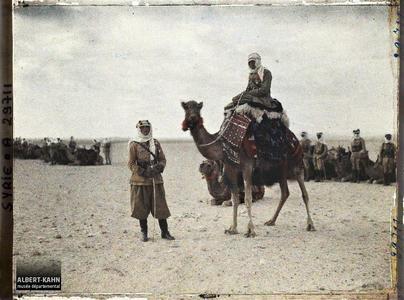 Syrie, Palmyre, Officiers français Méharis. Officiers des troupes françaises à dromadaire