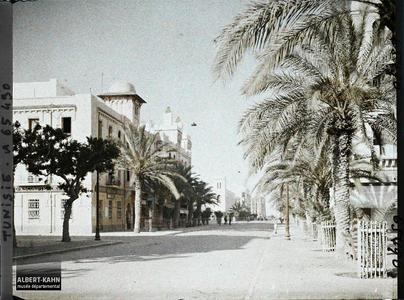 Tunisie, Sfax, l'Avenue Jules Gau. L'avenue Jules Gau