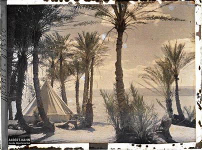 Arabie, Akaba, Palmeraie campement chérifien. Une tente du campement des forces arabes du royaume du Hedjaz dans une palmeraie au bord du golfe d'Aqaba