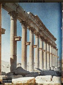 Syrie, Palmyre, Colonnade de la rue Centrale. La grande colonnade