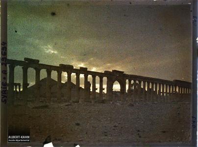 Syrie, Palmyre, Les Colonnades Centrales au Soir tombant. La grande colonnade au crépuscule