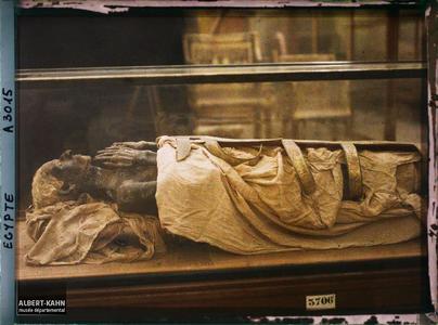 Egypte, Le Caire, Momie de Jouïya, père de la Reine Taïa (3706) Environ 1400 av. J-C..Momie dans une vitrine du musée égyptien du Caire